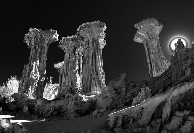 The Alien Towers of Mono Lake