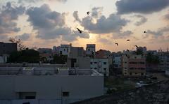 Triplicane, Chennai