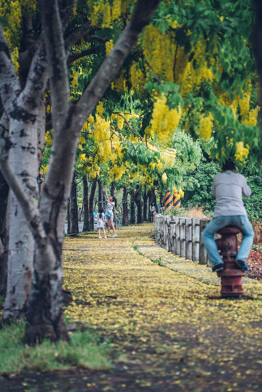 Taichung|TAMRON A071