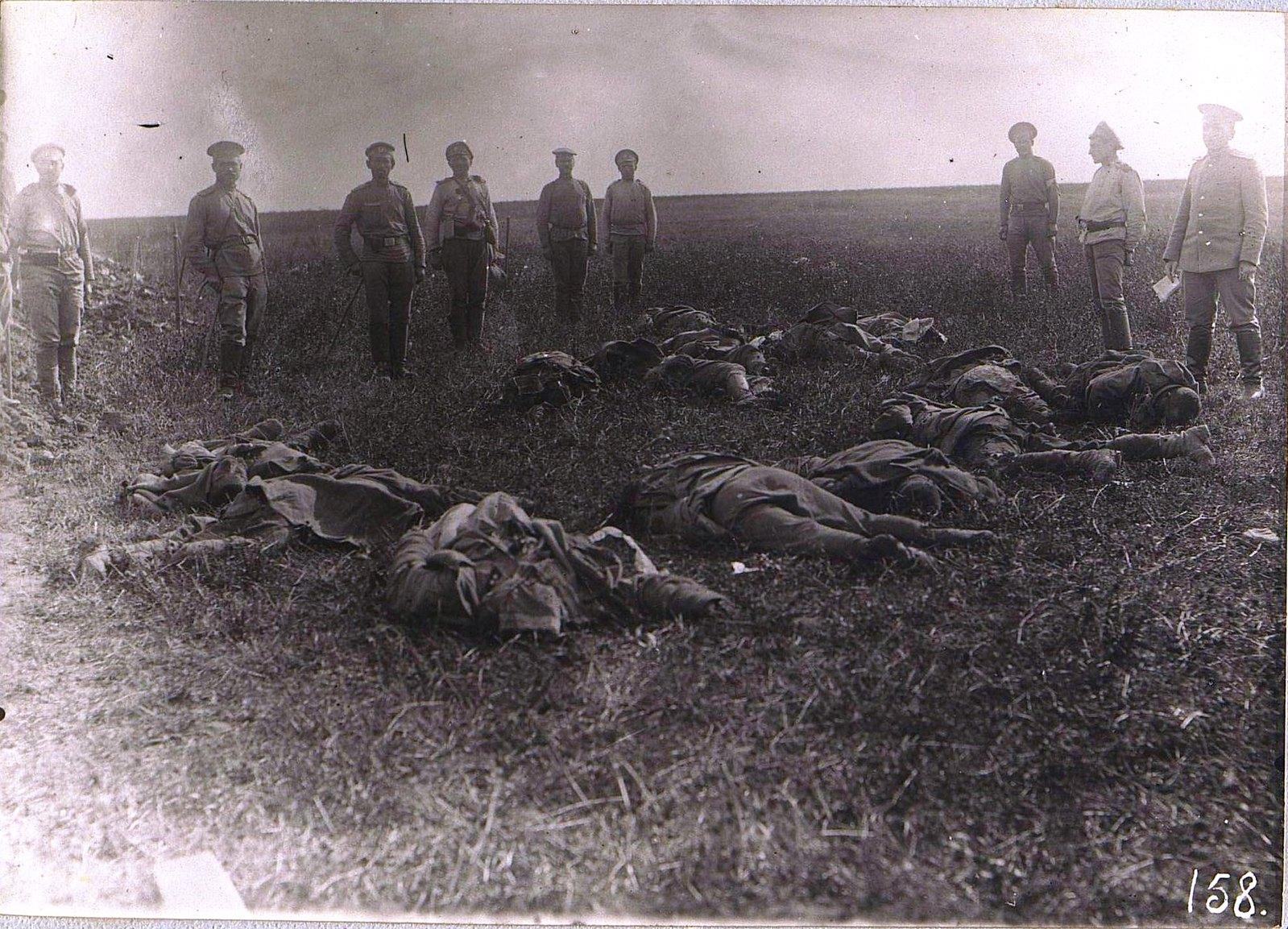 16. После боя. Трупы австрийцев. 31 августа 1915