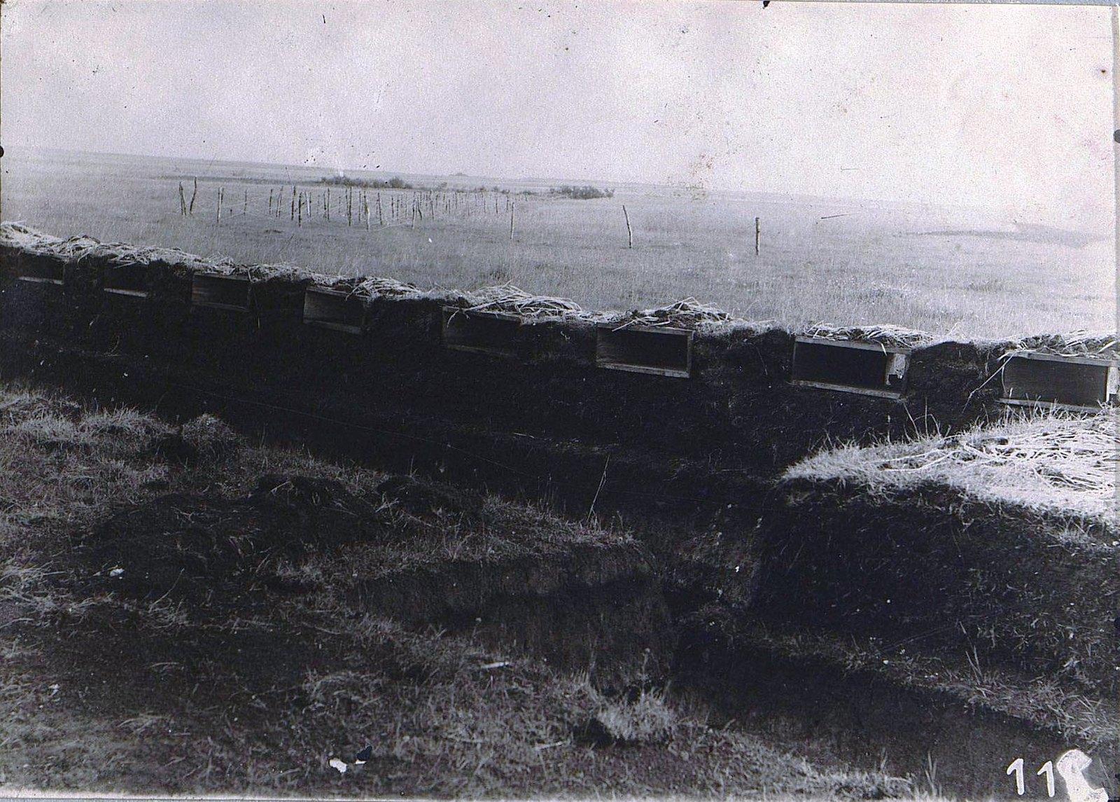 10. Окопы российской армии близ Белого Камня. Галиция. 1915