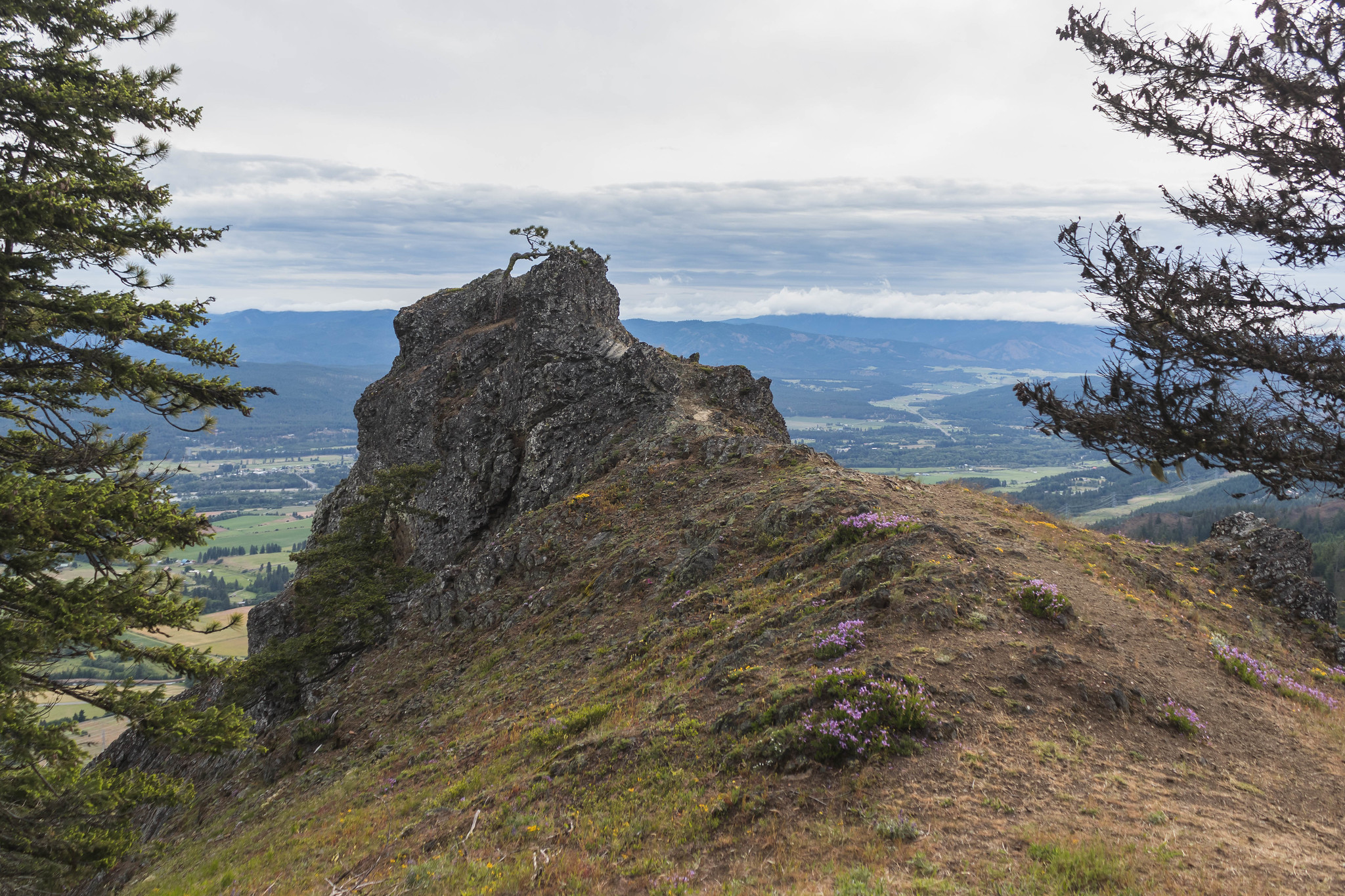Cle Elum Point viewpoint