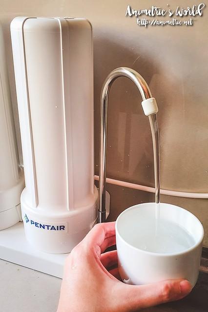 Pentair Sunstream Water Purifier