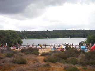 Beach at Frensham Great Pond, during Covid Lockdown SWC Walk 184 - Bentley to Farnham