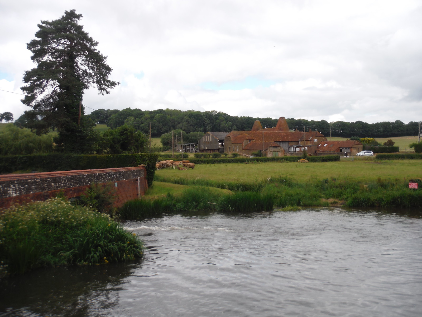 River Wey (South Branch) at The Mill House, Frensham SWC Walk 184 - Bentley to Farnham