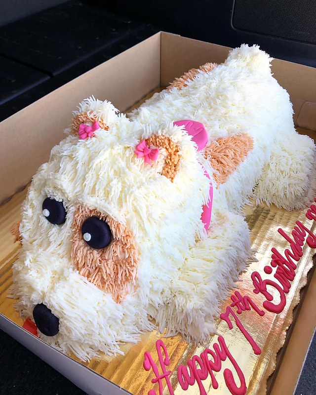 Cute Dog from Cakes by Amy