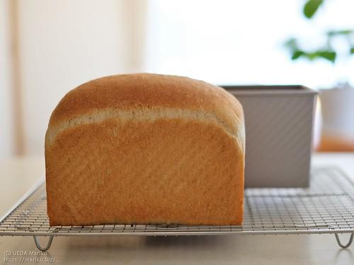 いちご酵母の全粒粉食パン 20200615-DSCT6869 (2)