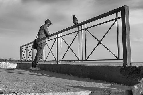 bw bythesea bird man greece athens artistic monochrome distance view enjoy