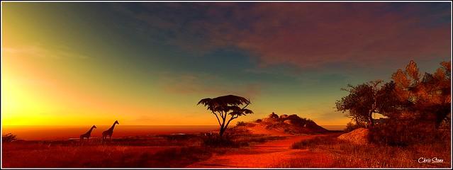 African Plains II