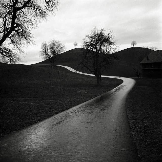168/366 Winter roads II