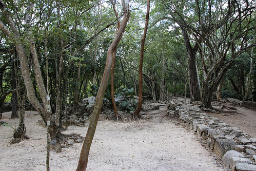 Pathway to the ruins, Chichen Itza, Mexico's Yucatán Peninsula