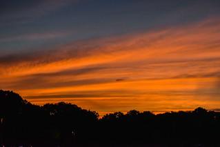 OMFD Sunset