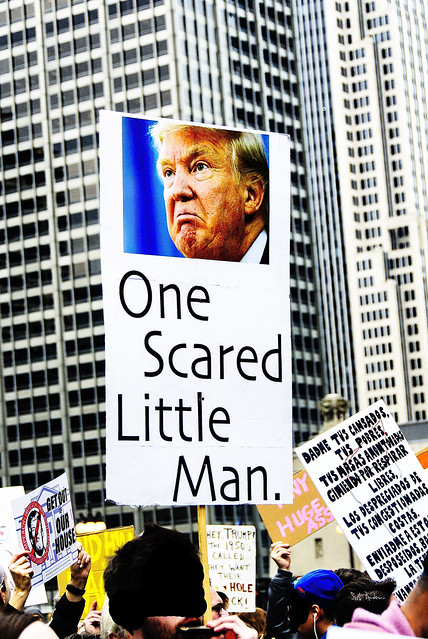 One Scared Little Man