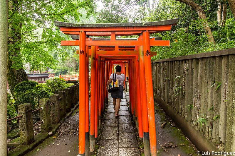 Laura paseando por el santuario Nezu, en Yanesen