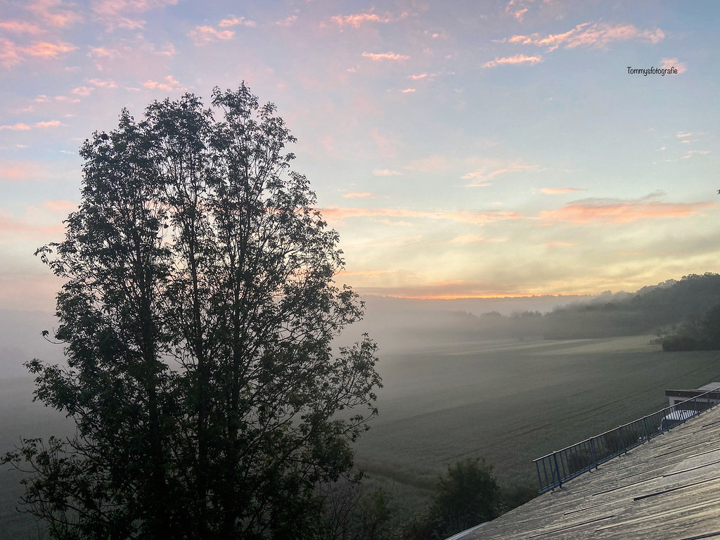 Sunrise from my sleepingroom in Germany after rain.