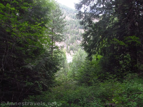 You might be able to see a glimpse of white water through the trees at the viewpoint.  Kootenai Park, Cabinet Mountains, Montana