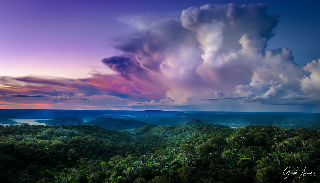 View of Tropical (rain) forest with clouds and sky in Bolivia. Travel, nature photo. American jungle. Selective focus