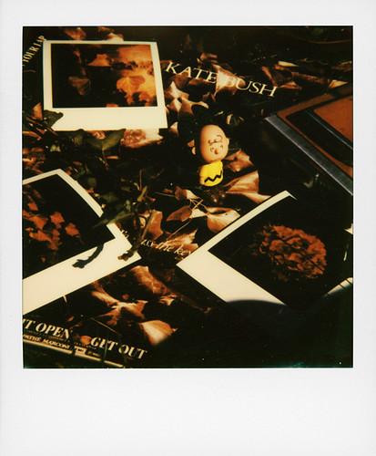 Vinyl ... Kate Bush