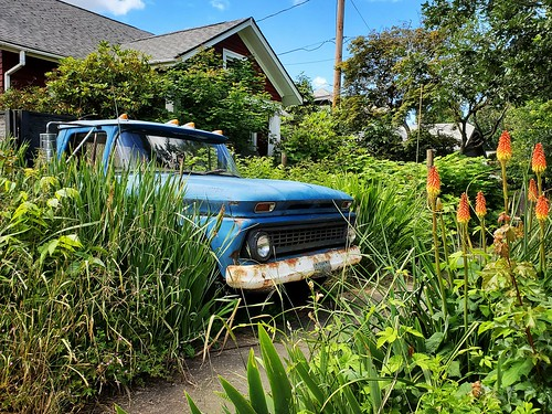 chevy chevrolet pickup classictruck landscaping