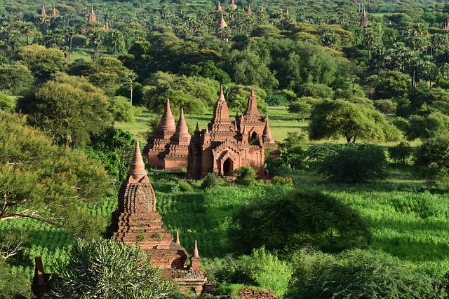 Bagan, Myanmar (Birmania) D810 2096