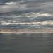 La mar farriega