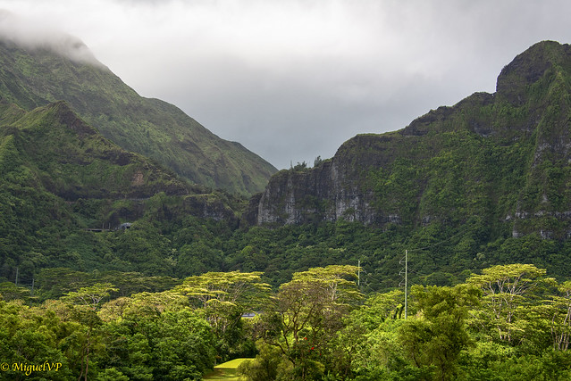 Pali lookout, Koolau