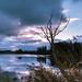 Lac de Seedorf, Noréaz