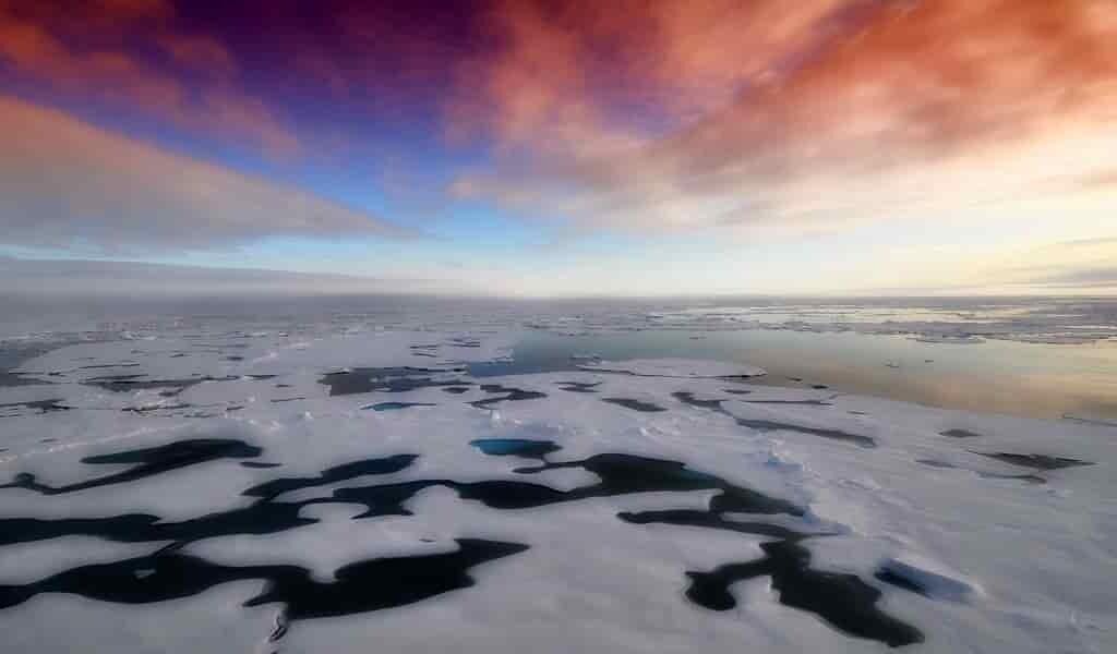 la-perte-de-glace-de-mer-en-Antarctique-menace-la-vie-marine