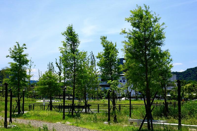 新新公園 台北南港