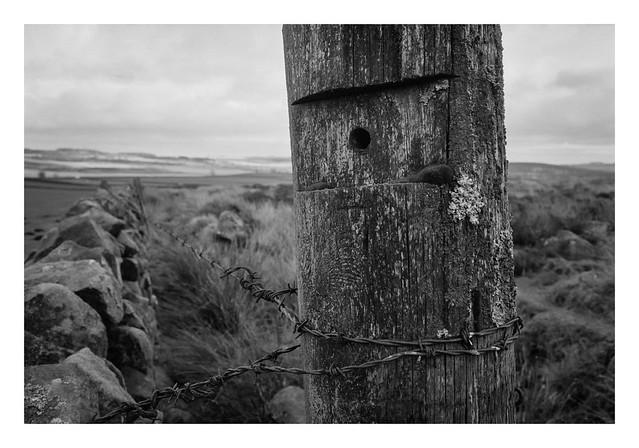 Moorland fencepost
