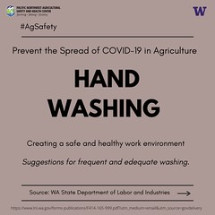 Covid-19 Handwashing Requirements - English