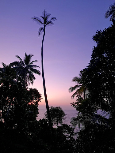 asie leverdesoleil srilanka asia sunrise mirissa