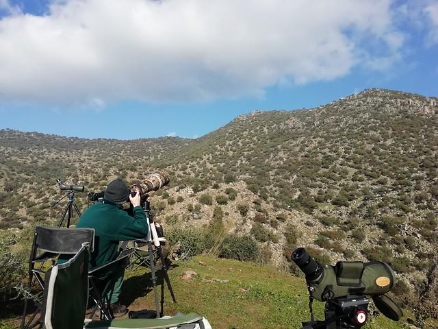 Buscando al lince ibérico en la Sierra de Andújar