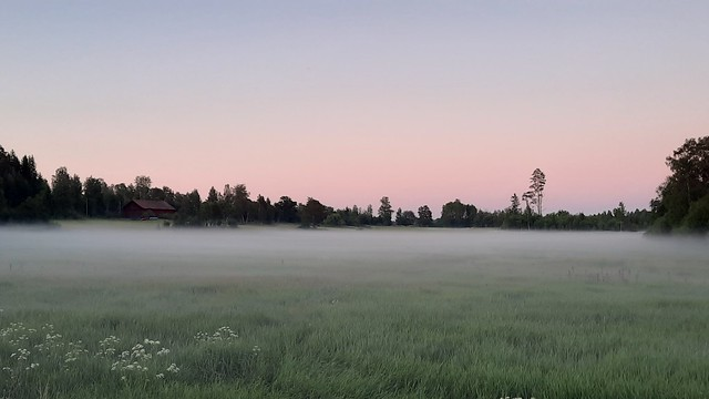 Dalarna midsummer night fog