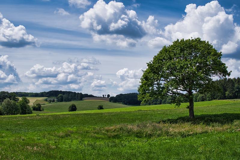 schönes Land ...