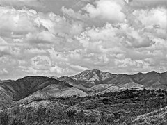 Landscape (day 90)