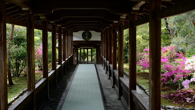 a corridor in early summer