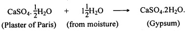 KSEEB Class 10 Science Important Questions Chapter 2 Acids, Bases and Salts 17