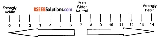 KSEEB Class 10 Science Important Questions Chapter 2 Acids, Bases and Salts 7