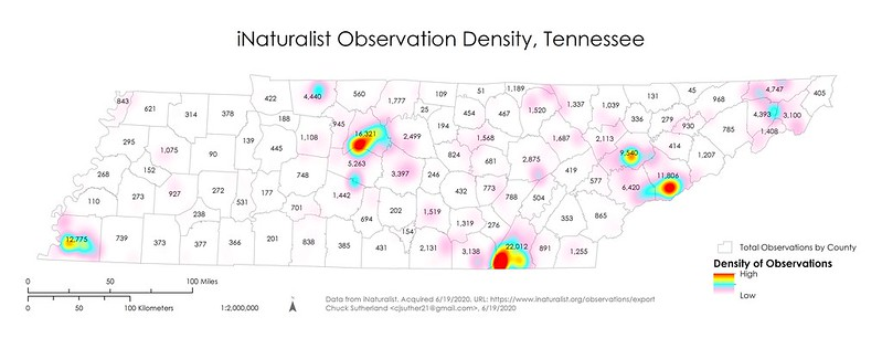 iNaturalist Observation Density in Tennessee
