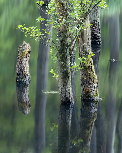 Waterworld 3