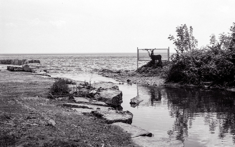 Looking out to Lake Ontario._