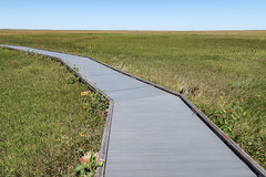 One of the national parks' prairies' tourists' boardwalks.