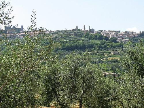 Toskánský vinařský výlet: Carmignano, Montepulciano, Montalcino, Bolgheri