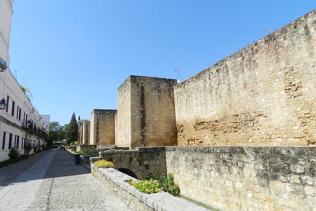 Muralla de calle Cairuán y estanque Cordoba 12