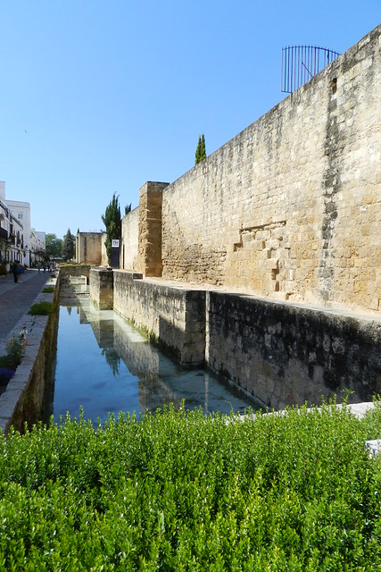 Muralla de calle Cairuán y estanque Cordoba 11