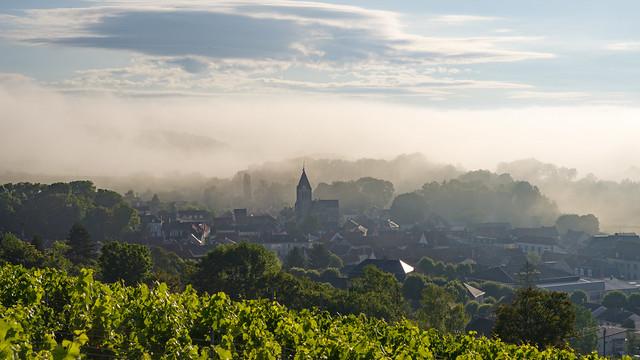 Morning mist {Explore}