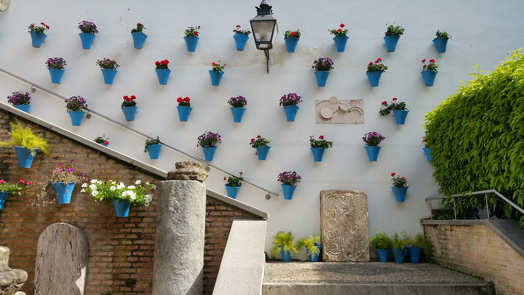 A white wall behind a stone staircase, filled with blue flowerpots, holding purple and red flowers