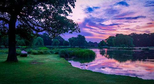 2020 countryuk countryuklondon countryuklondonrichmond naturepondlake naturesunrisesunset placelargenationalpark