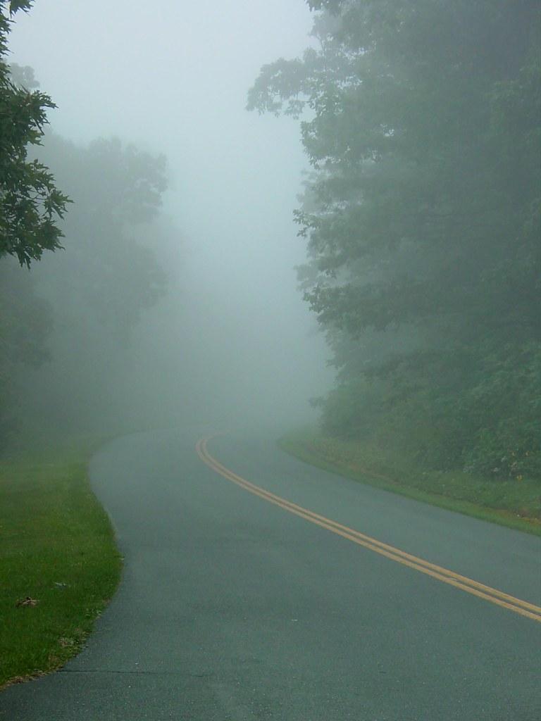 Fog on the Blue Ridge Parkway